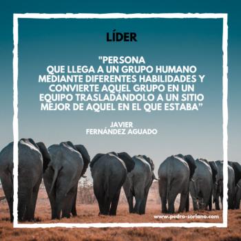 Definición de líder por Javier Fernández Aguado